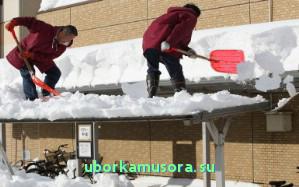 Куплю отвал для уборки снега на ниву